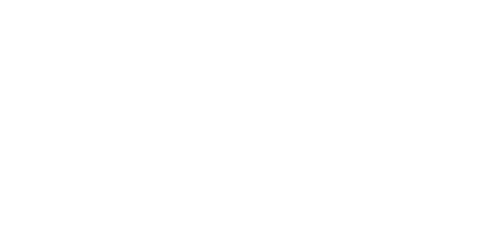 120 Counties Logo
